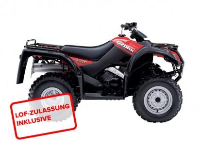 Suzuki-LTF-250-L4-2x4-2014-Rot