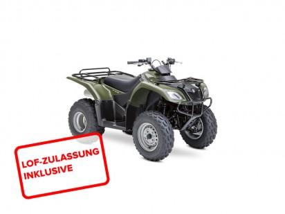 Suzuki-LTF-250-L4-2x4-2014-gruen
