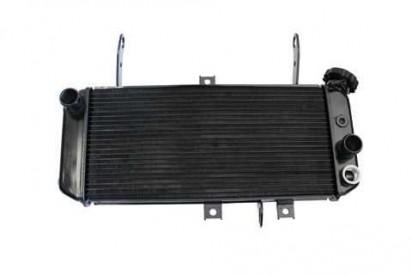 Motoprofessional Wasserkühler  SV 650 N und S 05-
